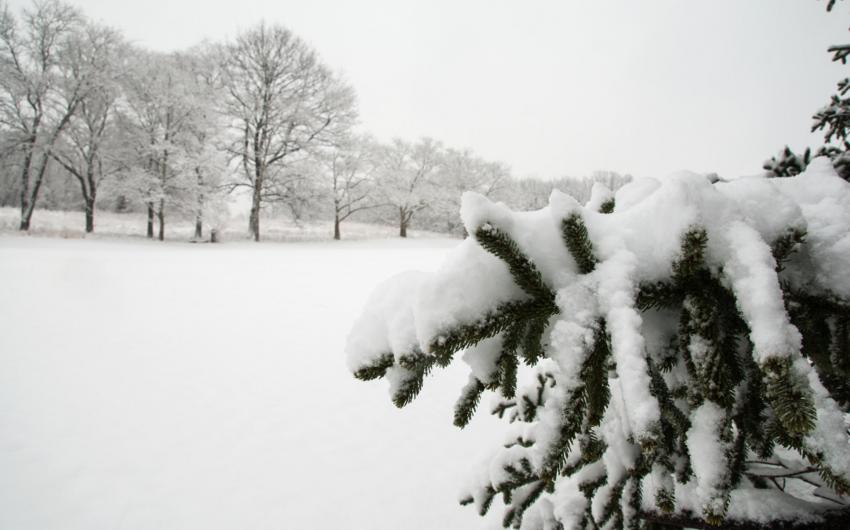 Министерство: Вчера высота снежного покрова в Баку достигла 29 см