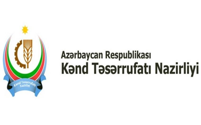 Kənd Təsərrüfatı Nazirliyinin tabeliyindəki dövlət xidməti ilə GIZ arasında anlaşma memorandumu imzalanıb