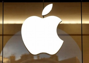 Apple shareholders re-elect board of directors