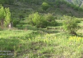 Footage from Gasimbinesi village of Kalbajar