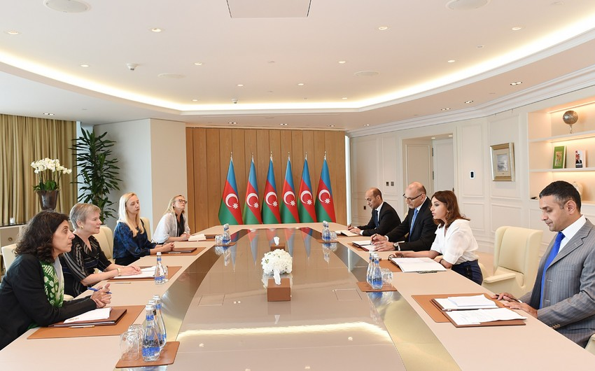 Birinci vitse-prezident Mehriban Əliyeva NATO baş katibinin müavininin rəhbərlik etdiyi nümayəndə heyəti ilə görüşüb - YENİLƏNİB