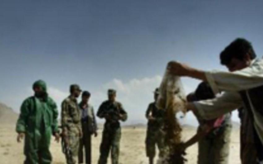 İran polisi narkotik qaçaqmalçılarına qarşı əməliyyat keçirib, 4 nəfər öldürülüb