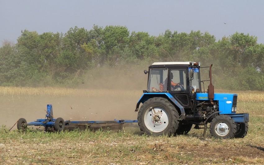 Belarus Azərbaycana bitkiçilik məhsullarının ixracını artırmaq istəyir