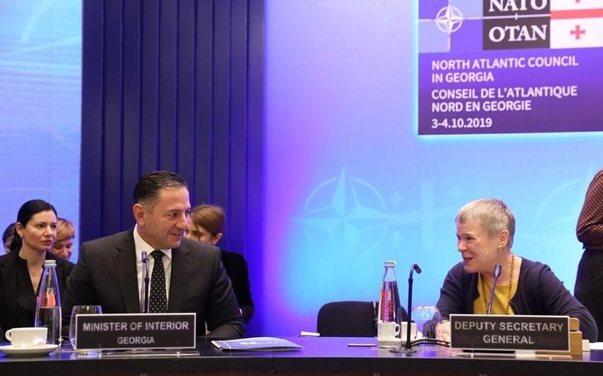 """Nazir: """"Gürcüstan NATO-nun etibarlı tərəfdaşıdır"""""""