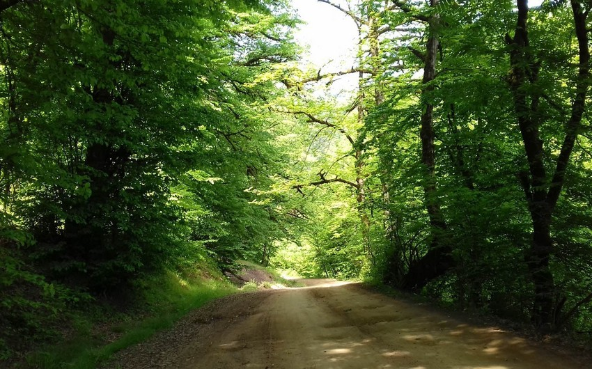National parks may reopen in Azerbaijan