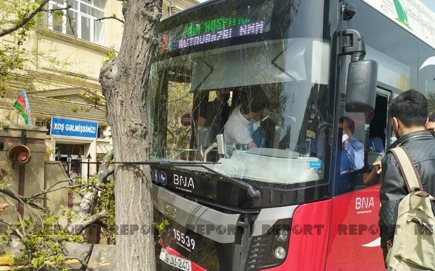"""BakuBus""un avtobusu ağaca çırpılıb -"