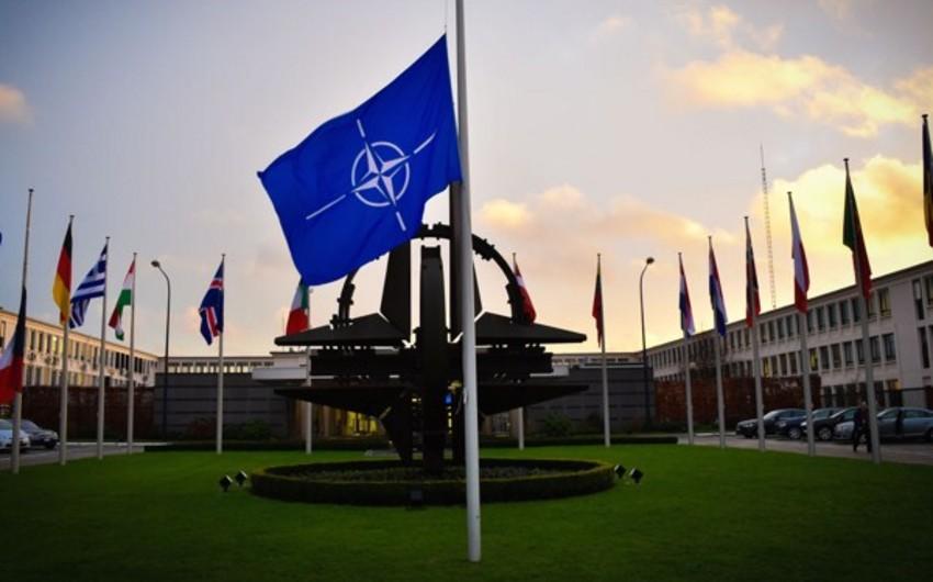 Бельгия сокращает военный бюджет, несмотря на требования НАТО