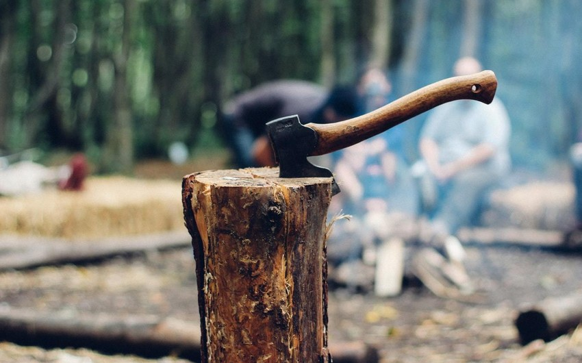 Tovuz Mənzil Kommunal Təsərrüfatı Birliyinin işçisi ağac kəsdiyinə görə cəzalandırılıb