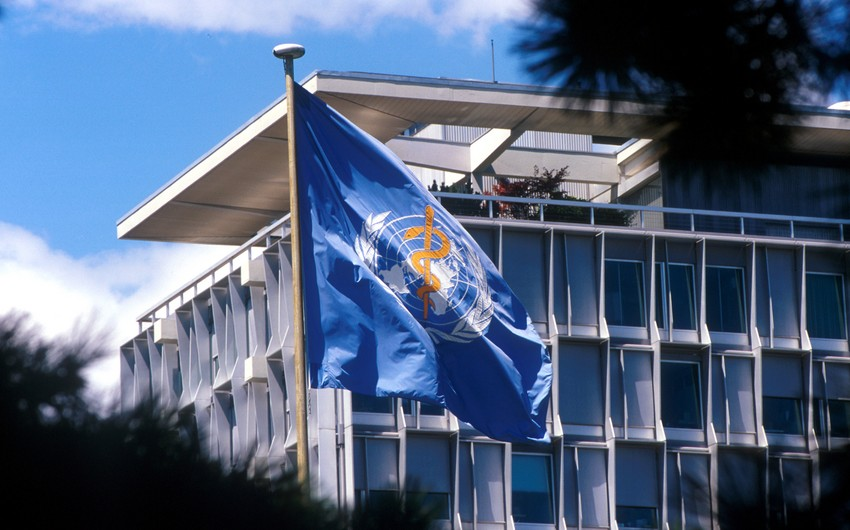 WHO experts call Wuhan report insufficient