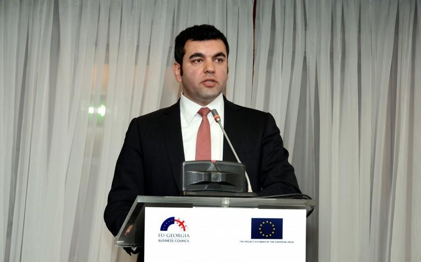 Gürcüstanın Ticarət və Sənaye Palatasına yeni prezident seçilib