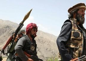 Минобороны Афганистана сообщило о ликвидации 233 боевиков движения Талибан