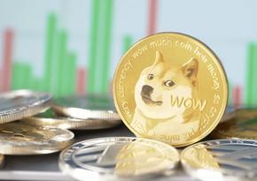 Твиты Илона Маска вызвали рост стоимости криптовалюты Dogecoin