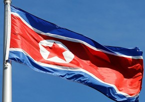 North Korean family placed in isolation facility for illegally raising cat