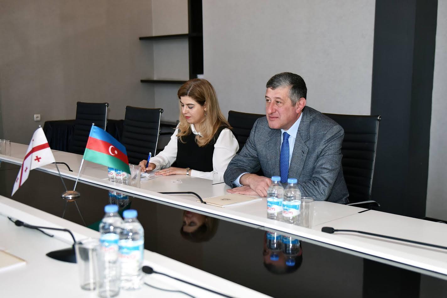 Aleksandr Cecelava: Gürcüstan Azərbaycanla təhsil sahəsində əlaqələrin inkişafında maraqlıdır