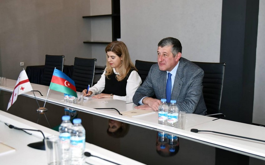 Александр Джеджелава: Грузия заинтересована в развитии связей с Азербайджаном в области образования