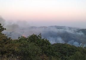 В Шамкире начался пожар в горной местности