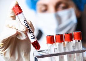 Azerbaijan confirms 596new coronavirus cases