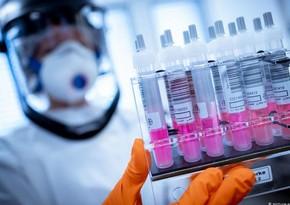 ВОЗ: На стадии клинических испытаний шесть вакцин от коронавируса