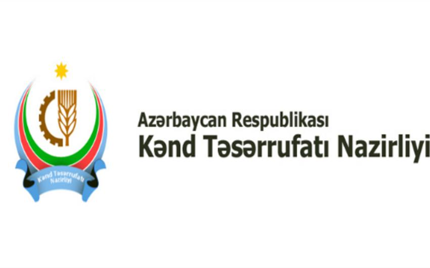 В министерстве сельского хозяйства пройдут встречи с кредитными союзами в следующем месяце