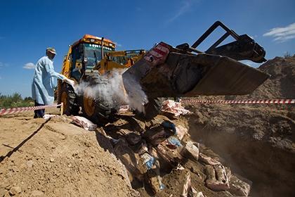 В России уничтожили 53 килограмма орехов, овощей и фруктов из Азербайджана