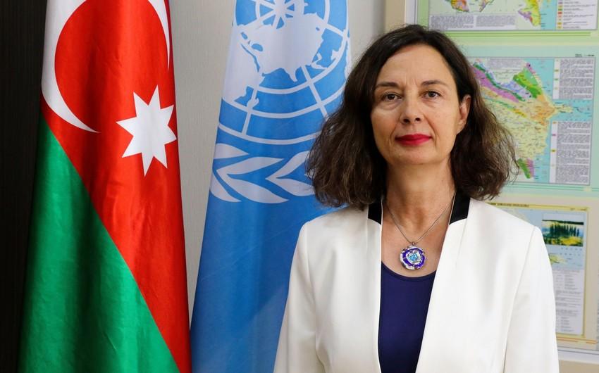 Чакмак: ФАО окажет поддержку развитию стоимостной цепочки в Азербайджане