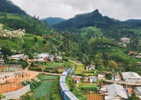 Шри-Ланка отменила двухнедельный карантин для вакцинированных туристов