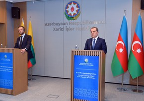 MFA issues statement on meeting of Azerbaijani and Lithuanian Foreign Ministers