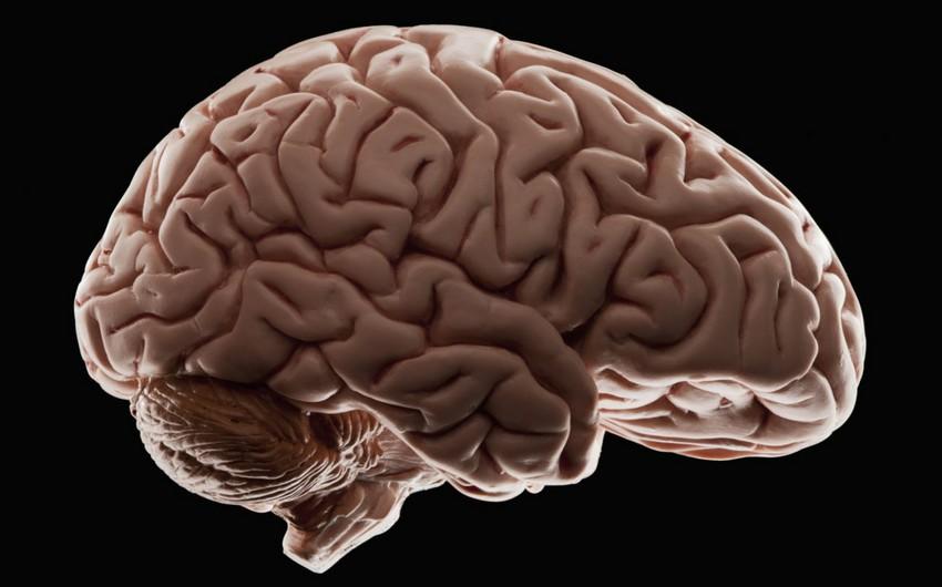 Ученые предупредили о разрушительных последствиях коронавируса для мозга
