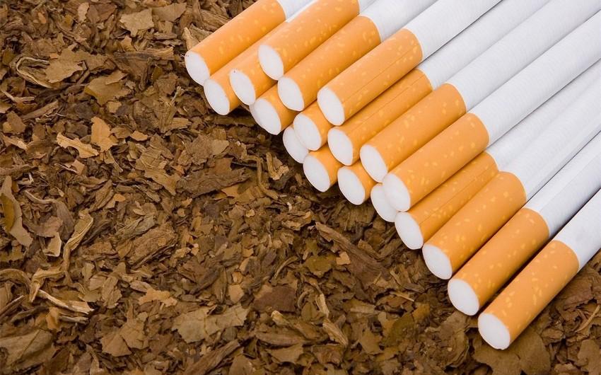 Ötən il Azərbaycanda tütün məmulatlarının istehsalı azalıb