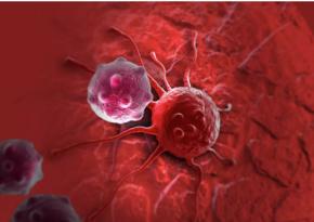 Онколог назвал главную ошибку, которая превращает еду в причину рака