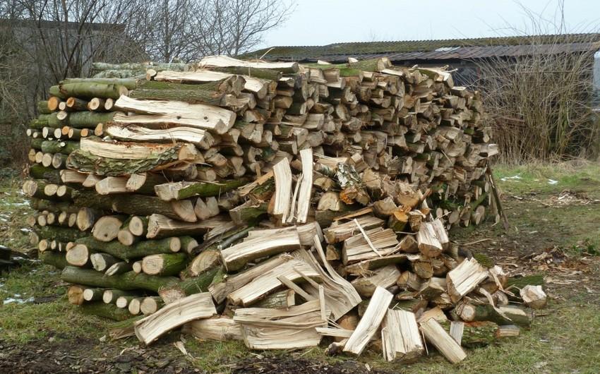 ETSN: Oduncaq tədarükünə başlanılıb