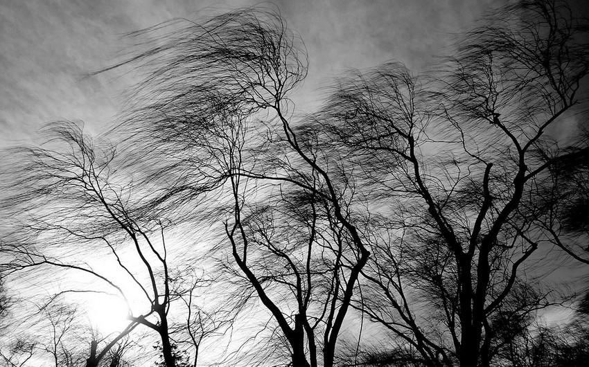 Martın 31-də müşahidə olunmuş faktiki hava açıqlanıb