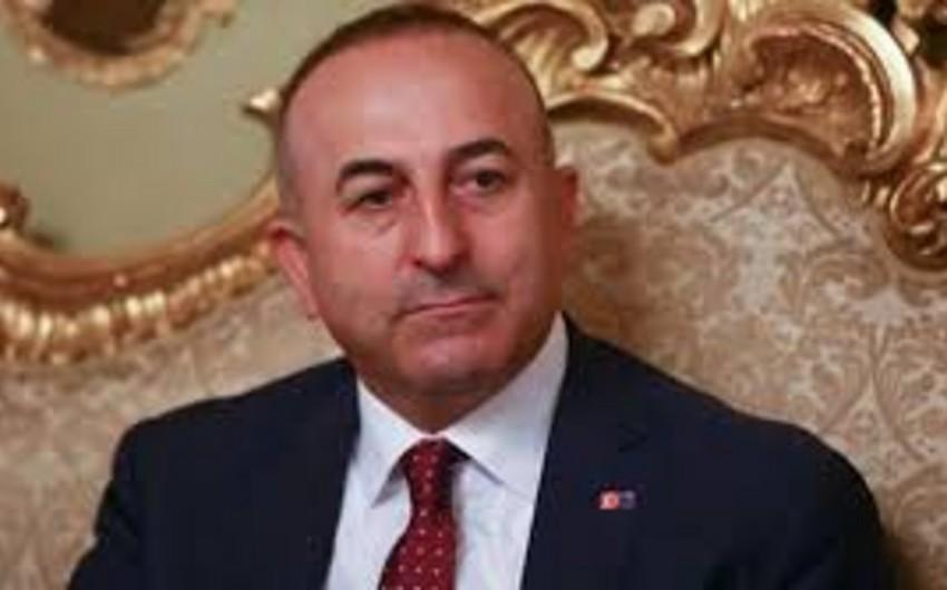 Чавушоглу: МИД Турции продолжит борьбу против признания геноцида армян