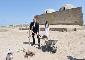 Президент и его супруга посадили деревья в Пиршаги