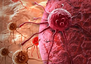 Scientists reveal new way in treating cancer