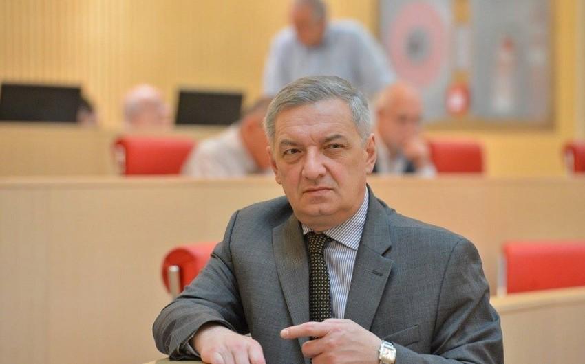 Vitse-spiker: Azərbaycan Gürcüstanda sabitliyin olmasında maraqlıdır