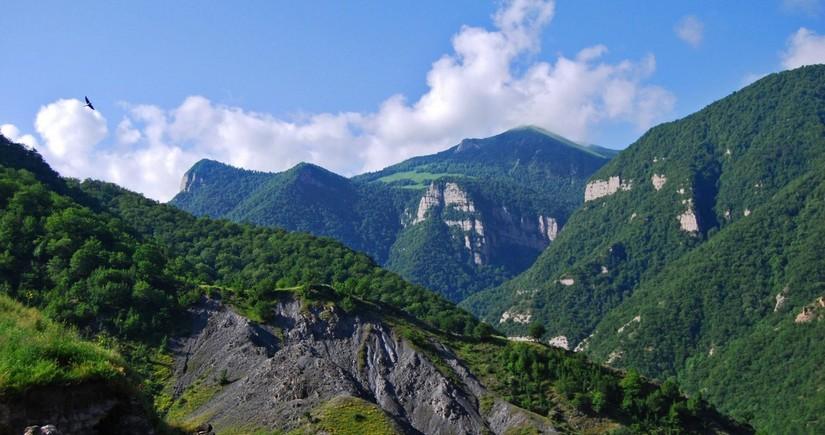 Индустрия 4.0 на Карабахской земле: возможности аграрного сектора