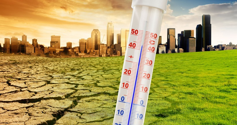 Research: Climate warming can lead to domino effect
