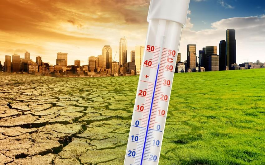Исследование: Потепление климата Земли может привести к эффекту домино
