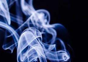 Люди могли начать употреблять табак 12 тыс. лет назад