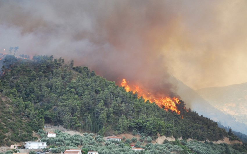 MENR: 19 wildfire disasters occurred in forest and desert areas in Azerbaijan this year