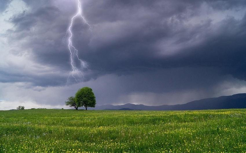 В Самухе молния убила 18-летнего юношу