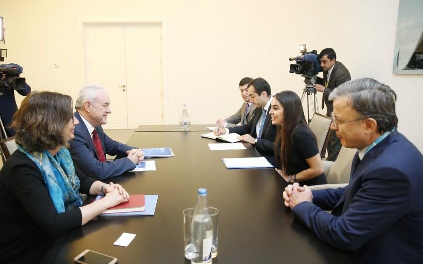 Heydər Əliyev Fondunun vitse-prezidenti FAO-nun kabinet rəhbəri ilə görüşüb