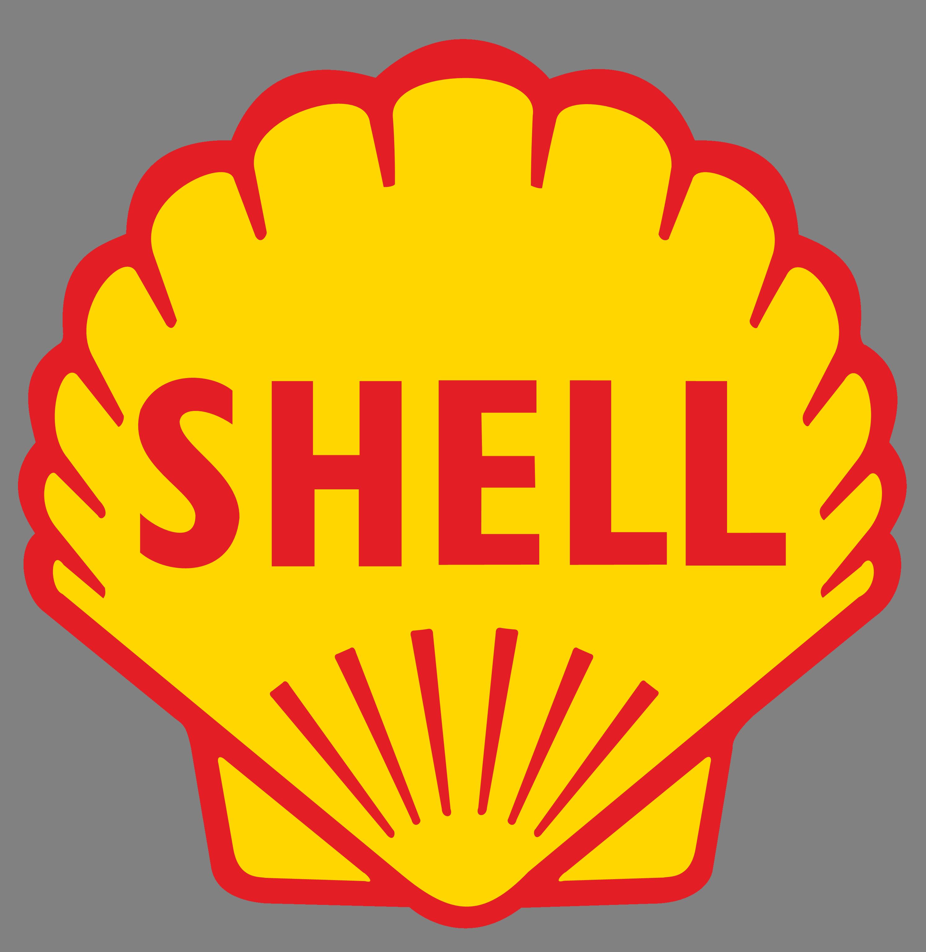"""""""Shell"""" Misirdəki qaz yatağına sərmayə qoymaqdan imtina edib"""