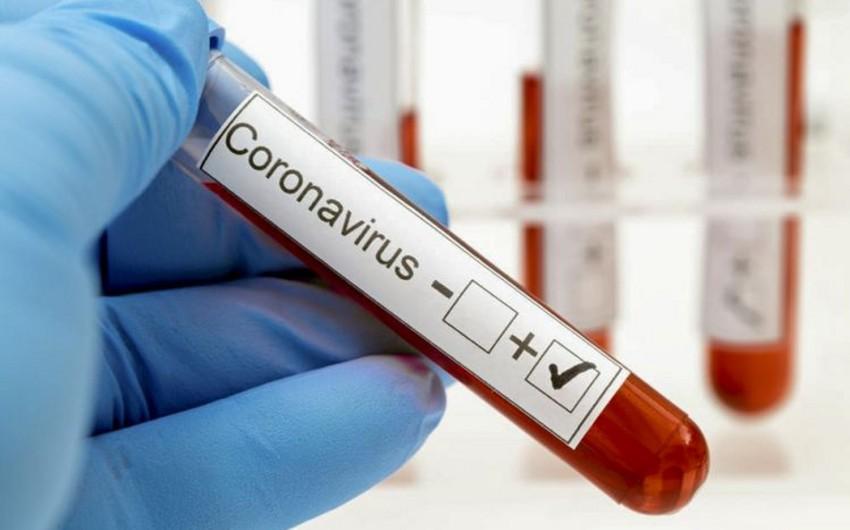 Gürcüstanda daha 952 nəfər koronavirusa yoluxub
