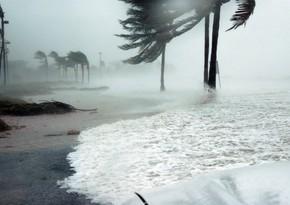 Hurricane Laura makes landfall in Louisiana