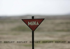 ANAMA defuses 100 mines in liberated territories