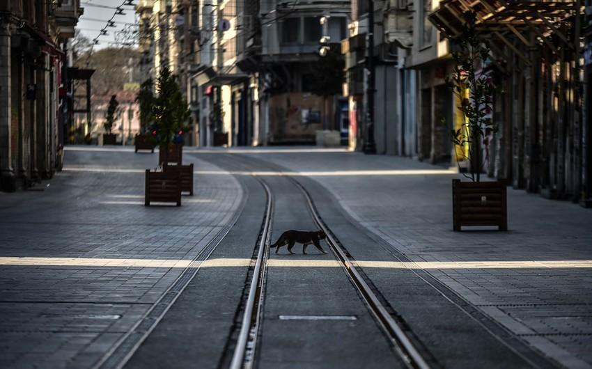 В 16 городах и районах движение общественного транспорта запрещено в выходные дни