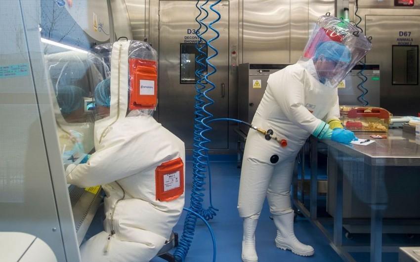 US intelligence obtains genetic data on viruses in Wuhan lab