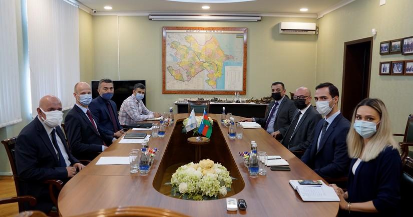 Глава представительства UNICEF в Азербайджане посетил ANAMA